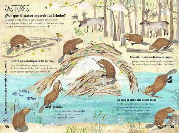 Gran libro de las bestias castores animales salvajes
