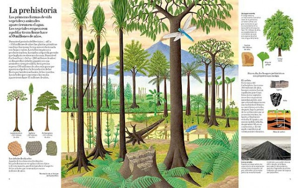 El gran libro del arbol y de los bosques. Editorial Juventud. Arboles prehistoricos