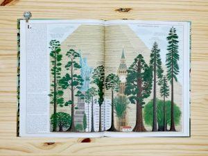 Interior libro informativo arboles de maeva tamaño