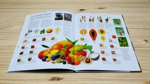El gran libro del árbol y del bosque editado por juventud. Variedad de Frutos