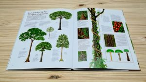 El gran libro del arbol el bosque. Editorial Juventud. Tropical.