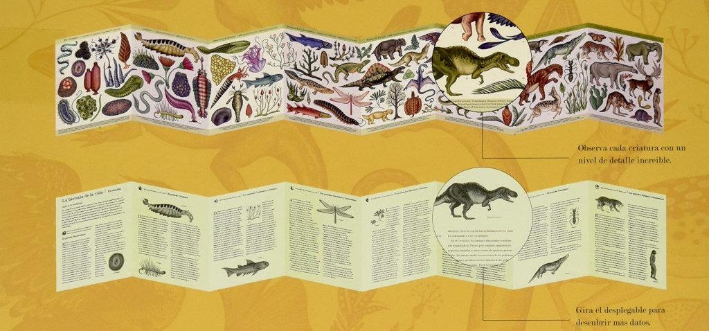 """Desplegados del libro """"Historia del la vida. Evolución"""", editado por Impedimenta"""