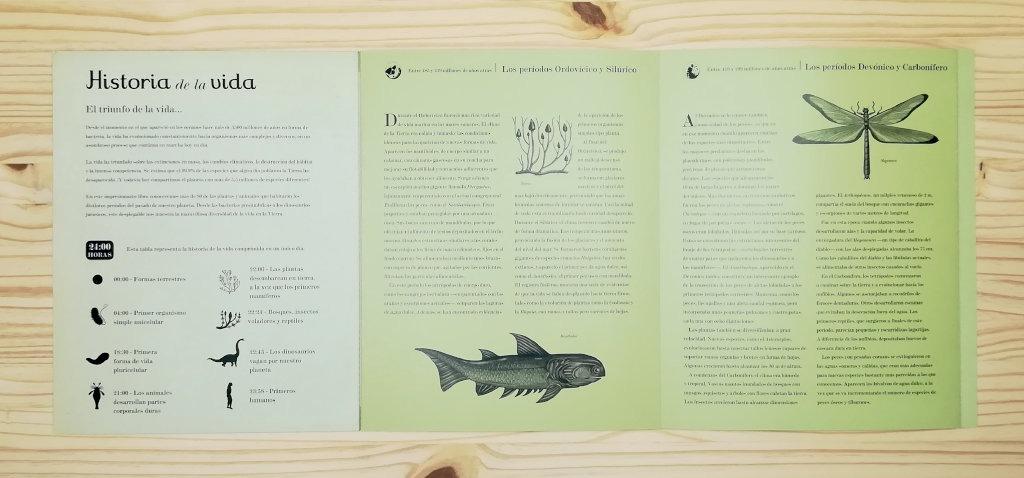 """Páginas interiores 3 del libro """"Historia del la vida. Evolución"""", editado por Impedimenta"""