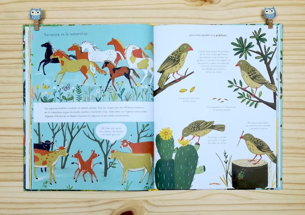 """Páginas interiores 4 del libro informativo """"El origen de las especies"""", de Sabina Radeva, editado por Harperkids y Patio"""