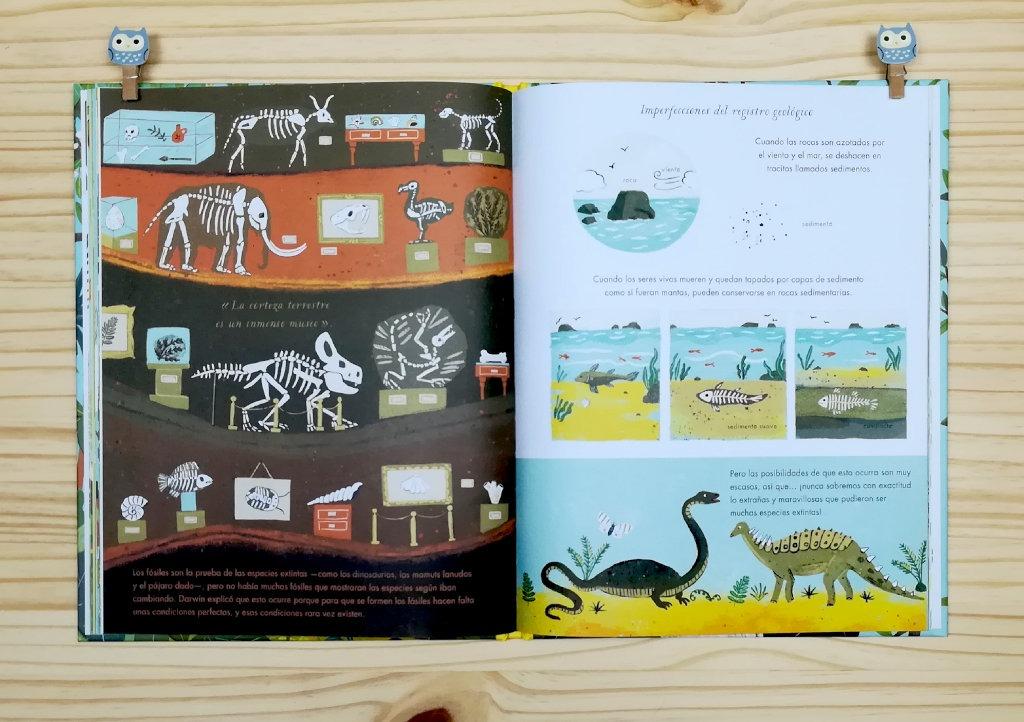 """Páginas interiores 6 del libro informativo """"El origen de las especies"""", de Sabina Radeva, editado por Harperkids y Patio"""