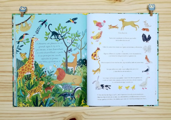 """Páginas interiores 8 del libro informativo """"El origen de las especies"""", de Sabina Radeva, editado por Harperkids y Patio"""