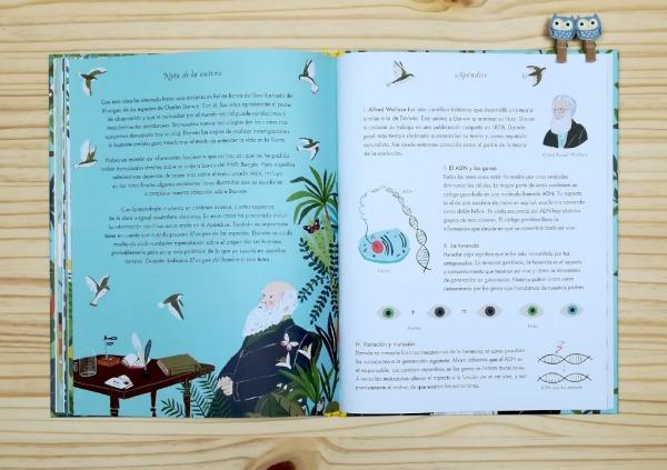 """Páginas interiores 9 del libro informativo """"El origen de las especies"""", de Sabina Radeva, editado por Harperkids y Patio"""