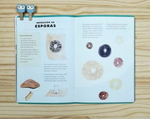 Cuaderno-de-aventuras-actividades con setas y hongos. Editado por Errata Naturae