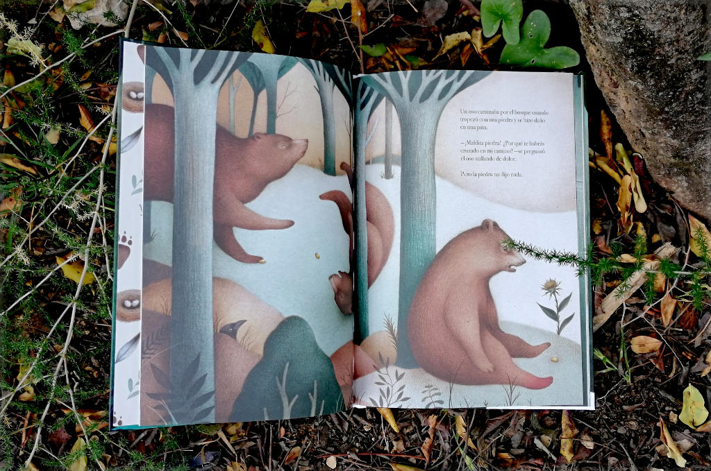 """Interior libro """"El lenguaje secreto de las piedras"""""""