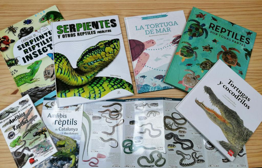 Reptiles y Anfibios: Serpientes, tortugas, ranas, lagartijas etc..
